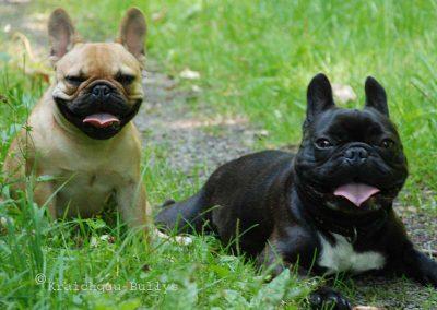 Emil und Babsi