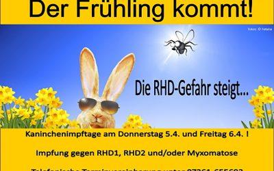 Impftage für Kaninchen!