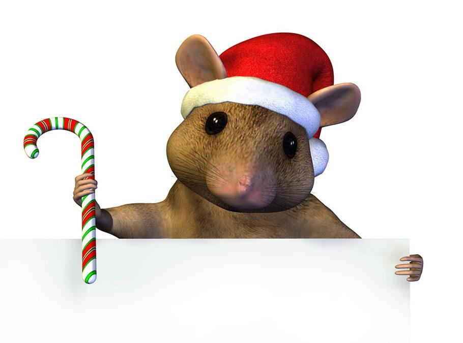 Achtung Weihnachtsferien!
